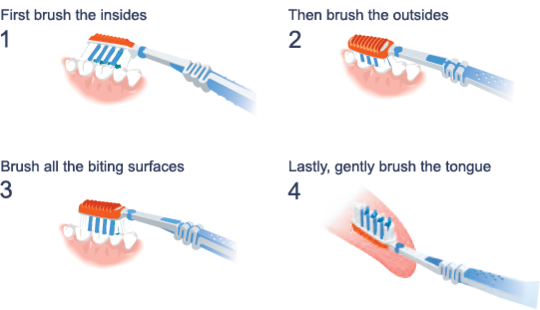 Tips on brushing teeth correctly